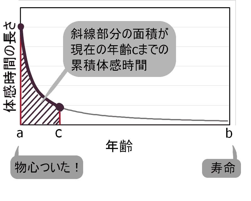 図2反比例のグラフの斜線部分